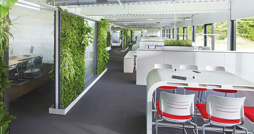 Biophilic office designed to optimize employee well-being