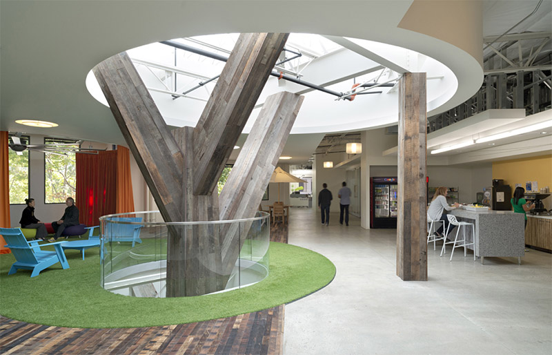 Google's Quad campus feature multi-story reclaimed wood structure