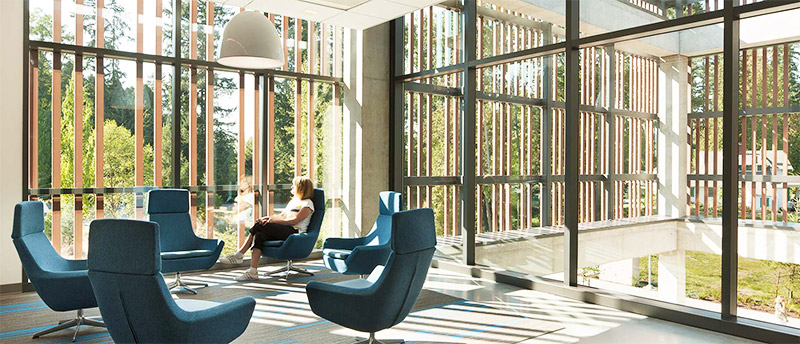 open office that appeals to biophilia