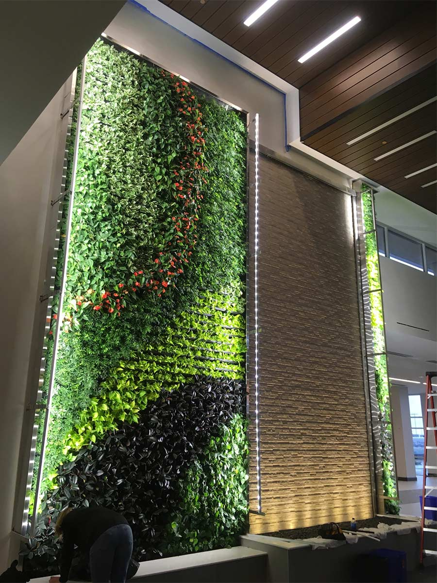 Denton Embassy's living wall and stone water wall