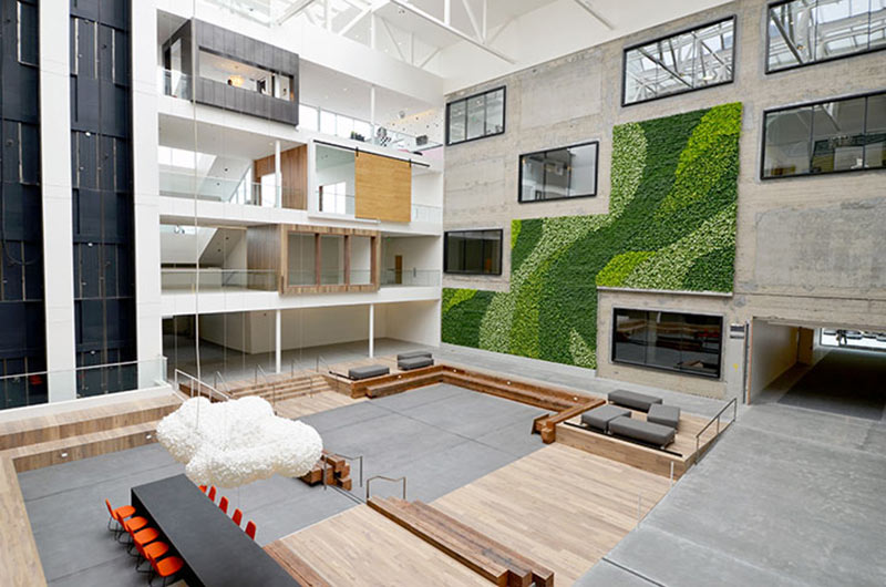 Green Living Wall in office