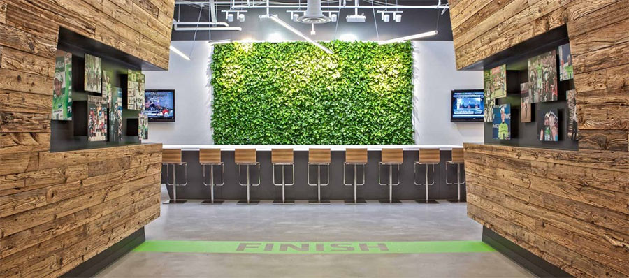 Cannondale's biophilic office featured reclaimed wood and a living wall