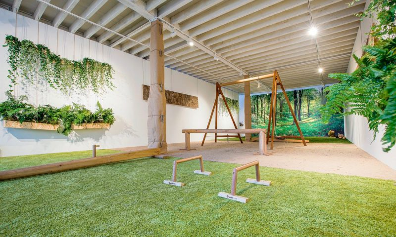 indoor biophilic gym