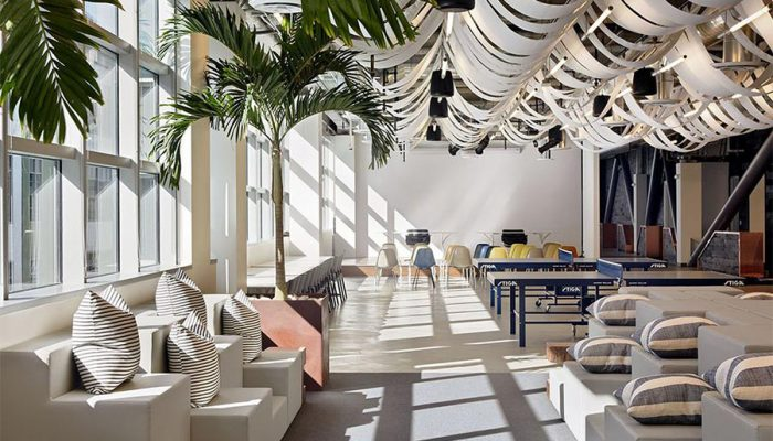 The Intersection of this Year's Office Design Trends and Biophilic Design