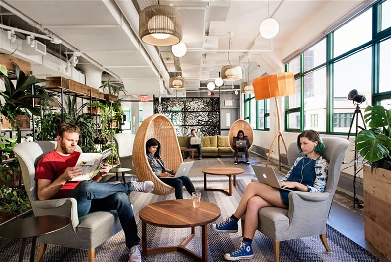 Etsy's Brooklyn office uses biophilic design elements