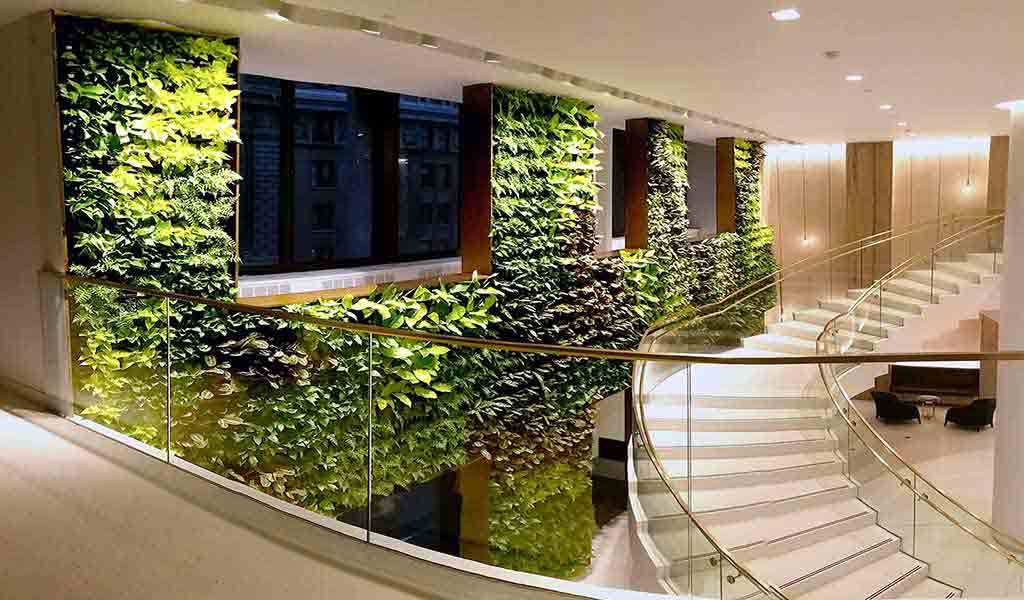 Living Wall Contours To Room S Structure