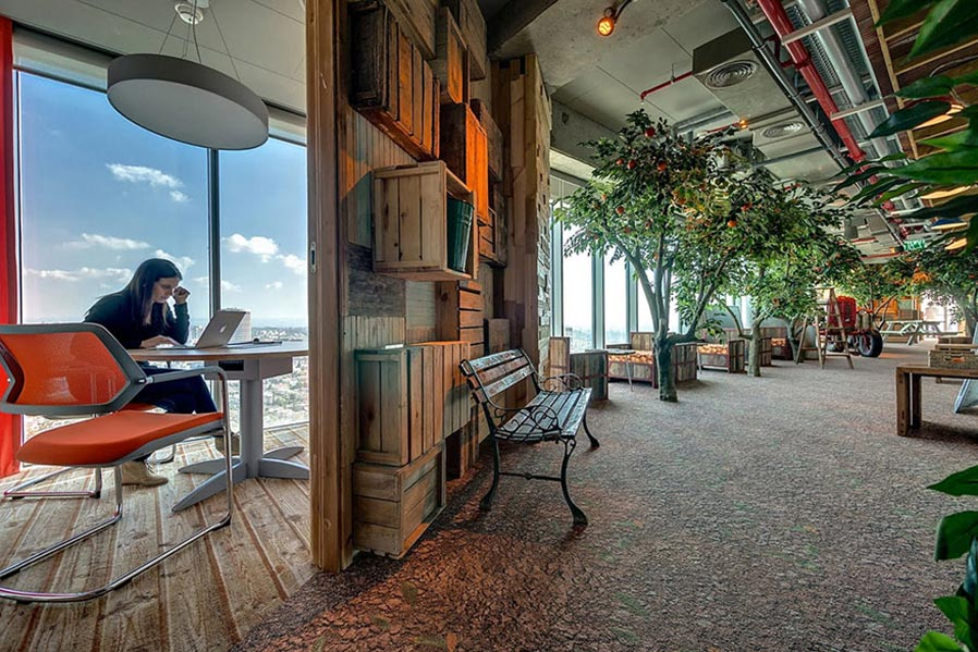 Google office meshes comfort with biophilic design