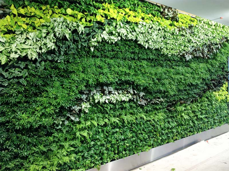 Living wall at G Sky in Atlanta creates vibrancy in windowless office