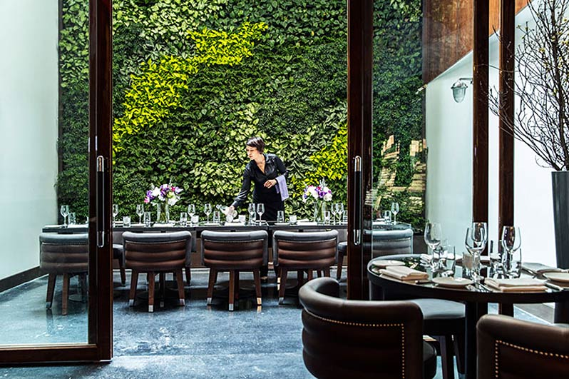 NYC's Hotel Hugo use a living wall in restaurant