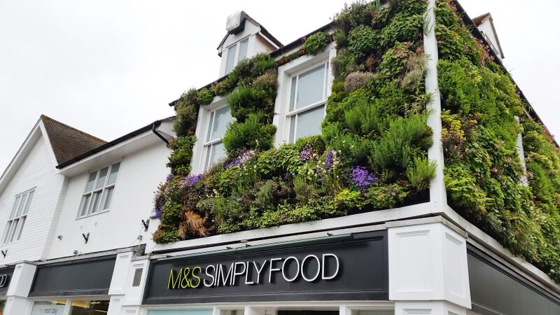 Outdoor living wall at M&S Simply Food