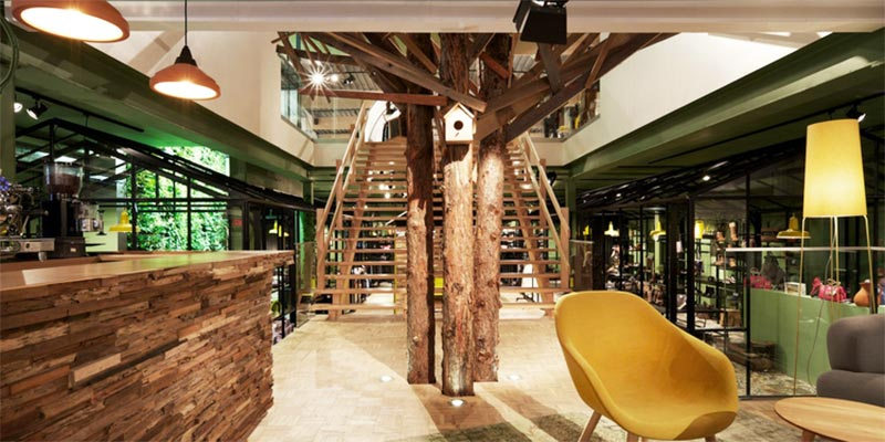 Rustic reclaimed wood and indoor trees bolster biophilia