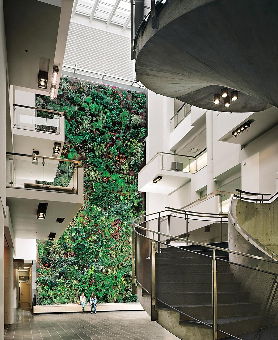 Giant living wall at University Guelph Humber