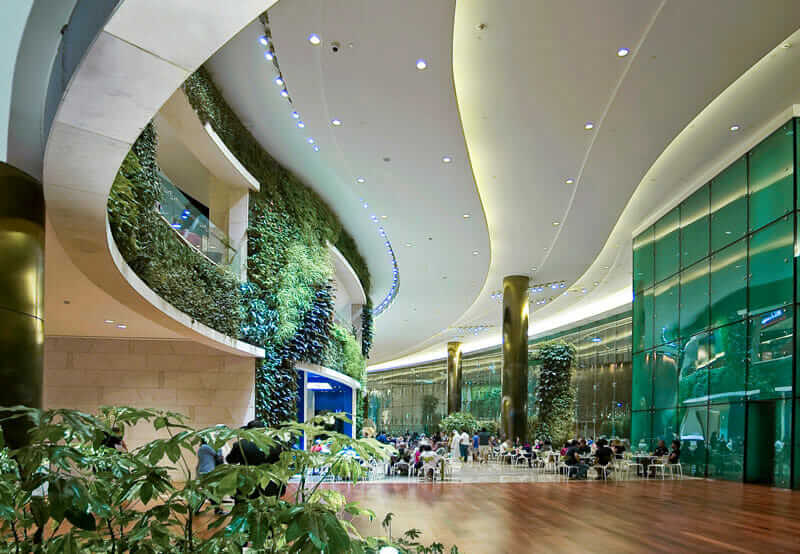Mall in Kuwait mimics mother nature through flowing lines, curvature, and plants