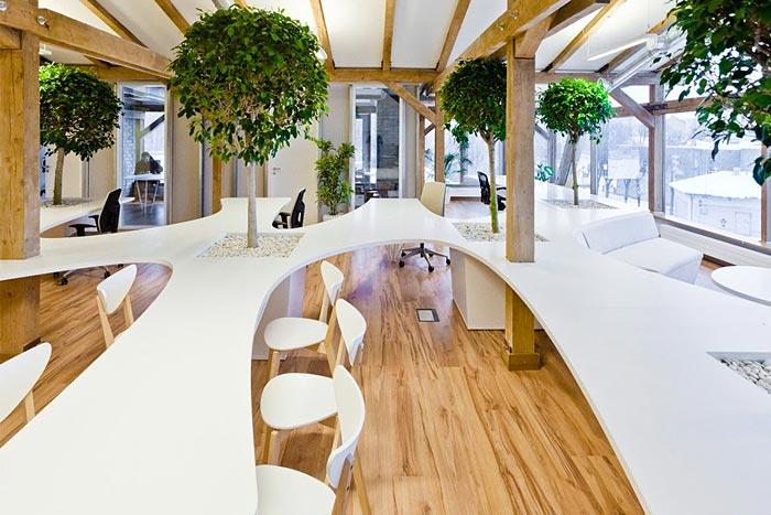 Example of biophilic design in open workspace