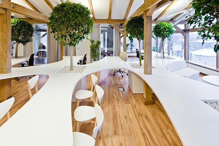 Example of biophilic design in open workspace