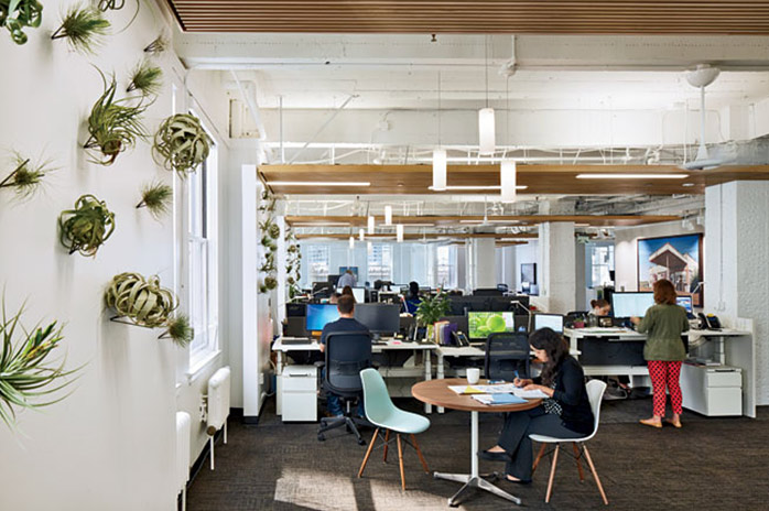 Example of WELL Certified office space with biophilic elements