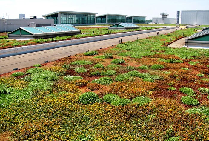 Living Roof Ford Rouge Plant