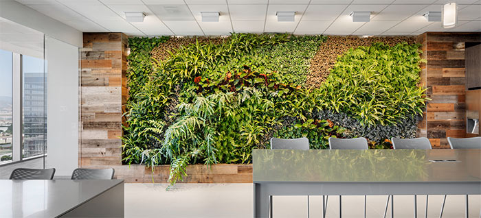 Reclaimed redwood paneling frames a living wall at Crown Castle in this bright common area