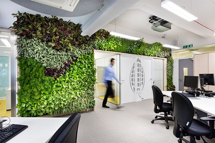 UK Green Building Council biophilic office with living wall