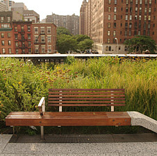 Reclaimed wood park benches in NYC